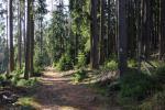 Turisté v Brdech budou mít letos více značených tras pro pěší