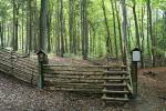 Víte, že ...přírodní památka Rukávečská obora, která byla vyhlášena již roku 1929 z důvodu ochrany cenného bukového lesa, je nej