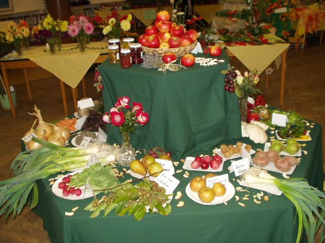 Výstava 2007 - Březovice