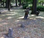 Kadaň - smírčí kříže v parku