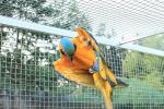 Park exotických zvířat
