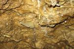 Bozkovské dolomitové jeskyně 4