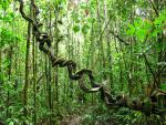 Národní přírodní rezervace - Mionší 3