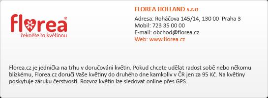 FLOREA HOLLAND s.r.o.